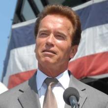 Synchronstimme Schwarzenegger